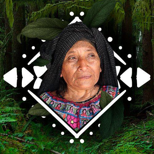 Indigena-amazonica